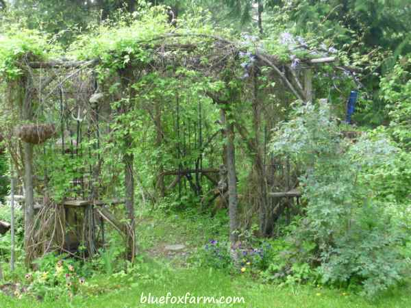 My first Rustic Garden Structure - the Circle of Thyme Chapel of St. Francis of Assissi