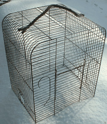 Is your bird cage missing a handle?  Use a wiggly twig!