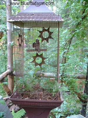 Rustic Victorian style bird cage with a twist...it's got a passenger, with wings, but it's a cherub...