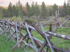 Chilcotin Russel Fence