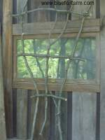 Twig Fan Trellis - see more here...