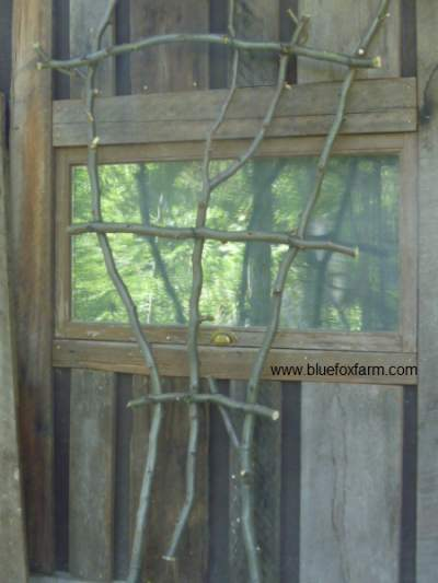 Twig Fan Trellis; classic plant support with a rustic twist