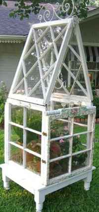 Wardian Case constructed from old windows