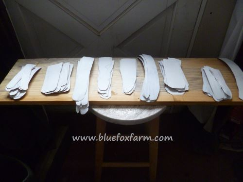 Angel Wing Feathers sorted into sizes...