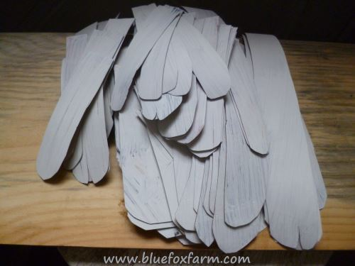 Angel Wing Feathers...