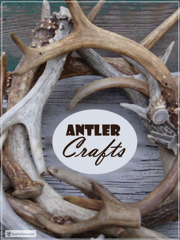 Antler Crafts - what to make with this fascinating natural material