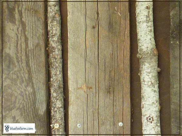 Barnboard alternates with Douglas Fir twigs