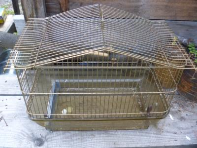 A birdcage with a plastic base...hmm, what can I make with that?