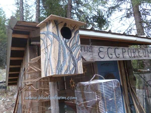 Camouflage Bird House