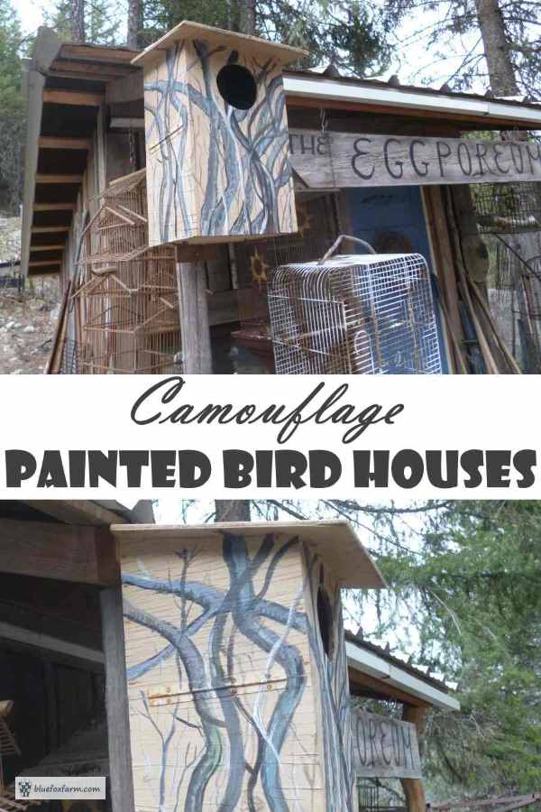 Camouflage Painted Bird Houses