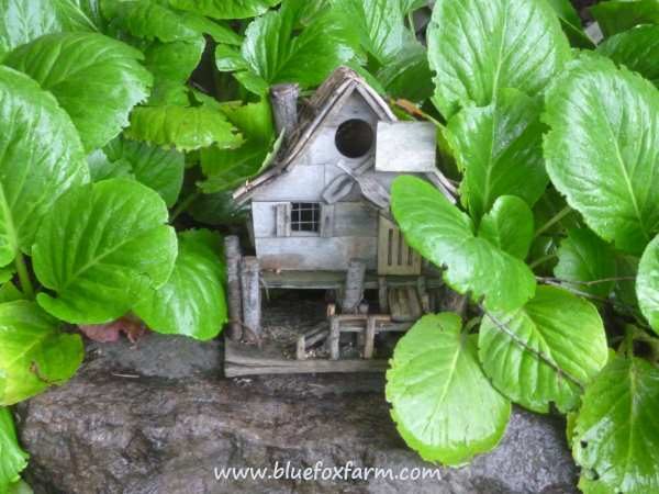And this little rustic log bird house nestles among the plants
