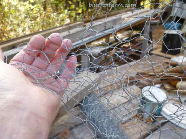 Bend a piece of chicken wire into shape