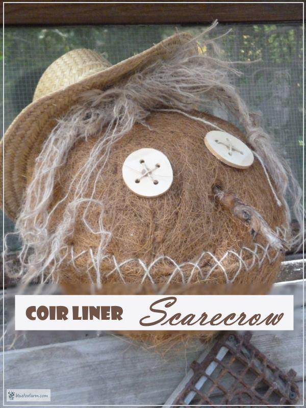 Coir Liner Scarecrow