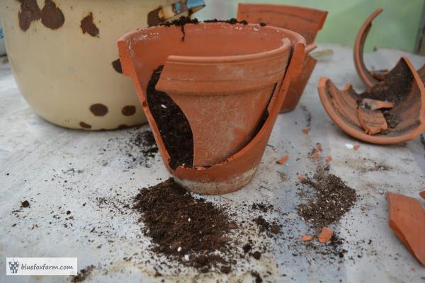 Make your own clay pot fairy garden