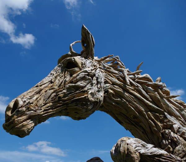 Driftwood Horse - detail of head