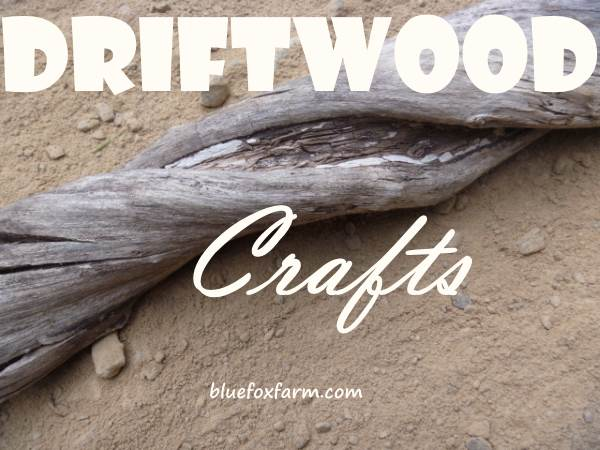 Driftwood Root with silvery patina