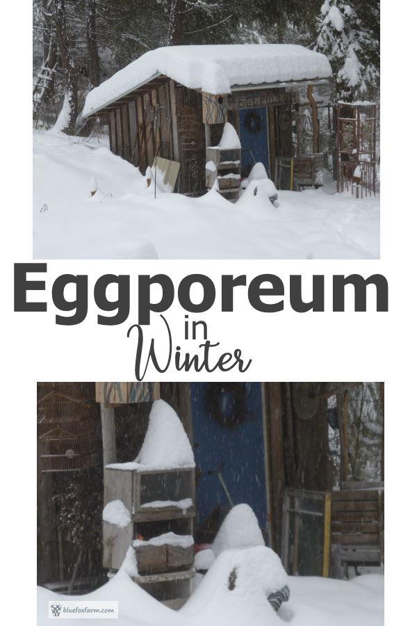 The Eggporeum in winter