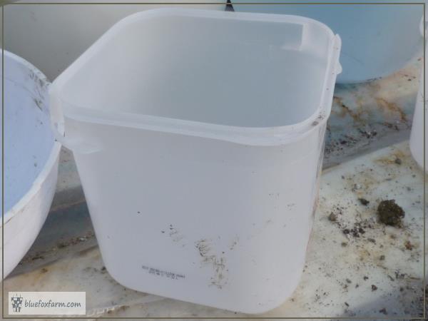 Square ice cream container