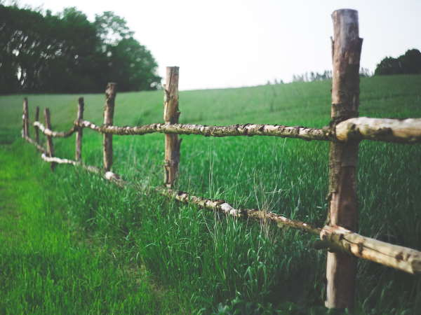 Post and rail fence