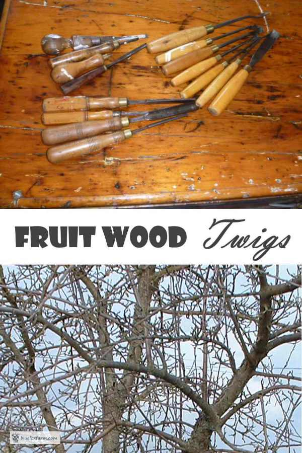 Fruit Wood Twigs