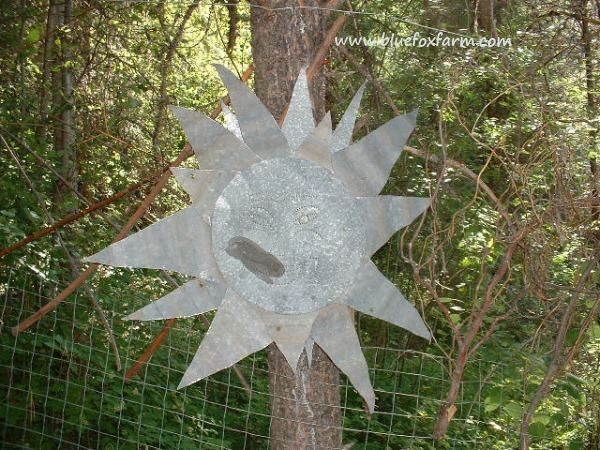 Galvanized metal sun...