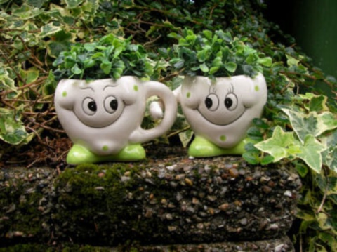 The Gardening Cook has some funny garden faces to share here...