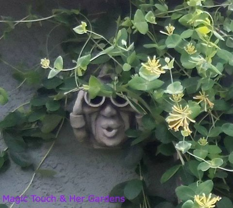 Seymore Birds is watching you on Magic Touch and Her Gardens Facebook page.