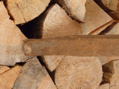 the top of the handle showing the rustic carved part