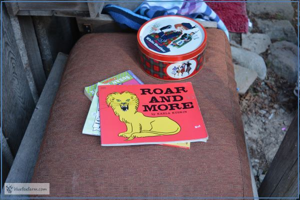 Seat cushion gleaned from the thrift store - the perfect place to read