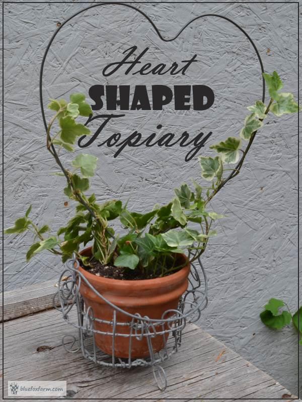Heart Shaped Topiary