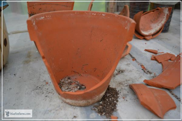 How to Break a Clay Pot for a Fairy Garden