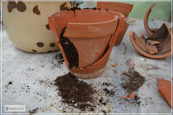 Reassembling the broken terracotta clay pot for a fairy garden