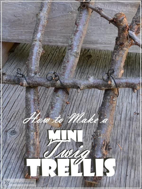 How to Make a Mini Twig Trellis