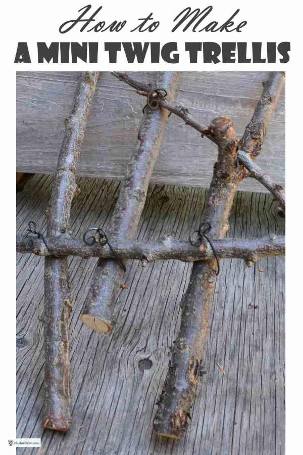 How to Make a Mini Twig Trellis