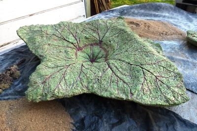 Birdbath using rhubarb leaves and painted with acrylic paint