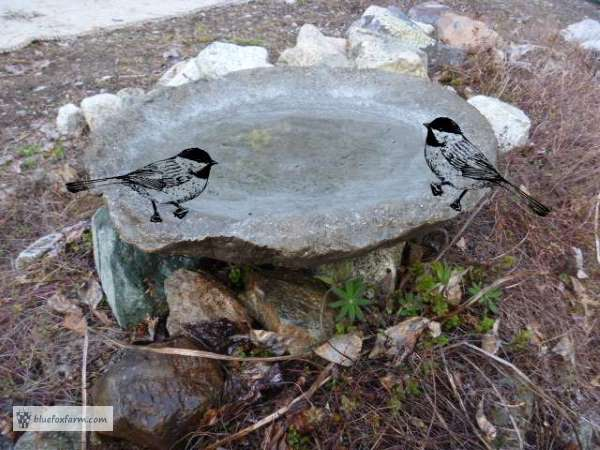 Rustic Hypertufa Birdbath - it's sure to attract birds and humans alike