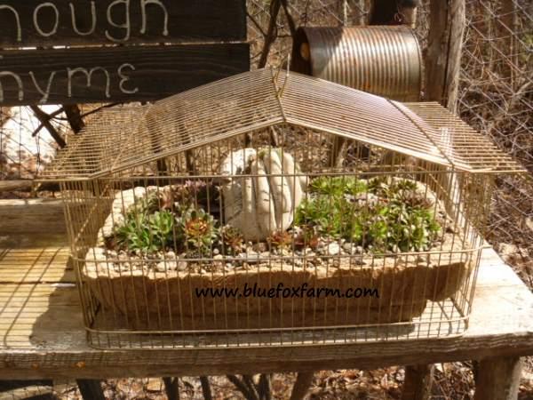 Hypertufa Hand in a planter