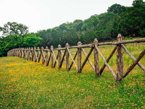 Criss-cross locust fence