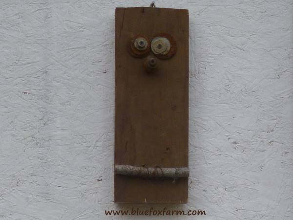 The funny face of this owl disguises its true purpose...