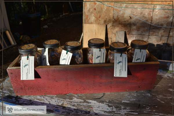 Pot Pourri in mason jars