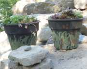 Camouflage Pots