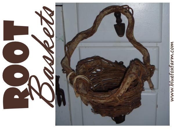 Root Baskets - natures bounty knows no bounds...