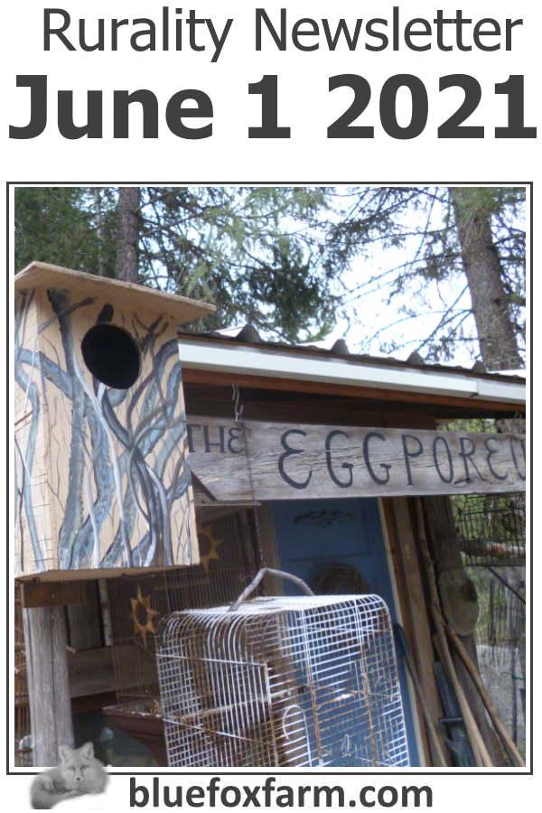 Rurality Newsletter