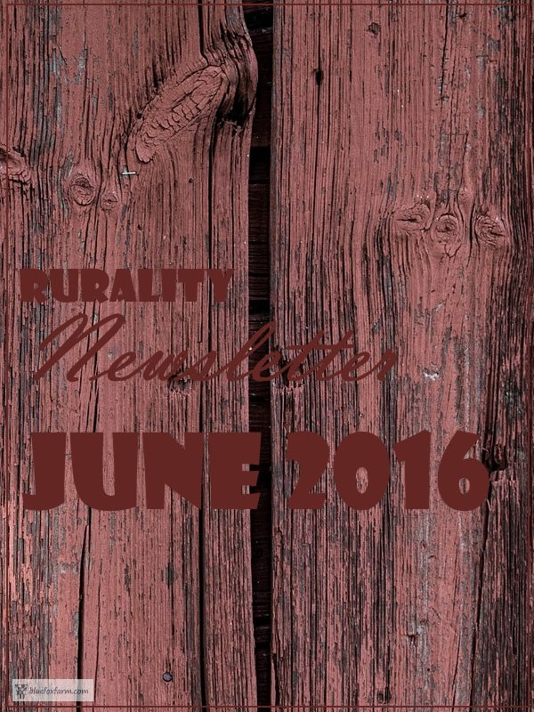 Rurality Issue June 2016