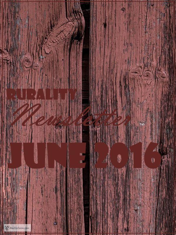 Rurality Issue June 2016
