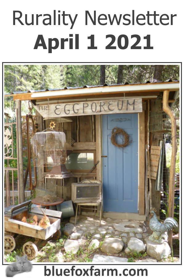 Rurality Newsletter - Rustic News