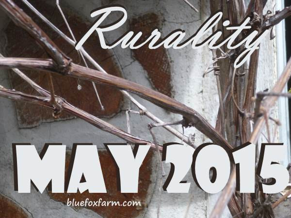 Rurality Issue #19 May 2015