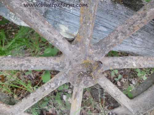 Blue Fox Farm loves rustic salvage...