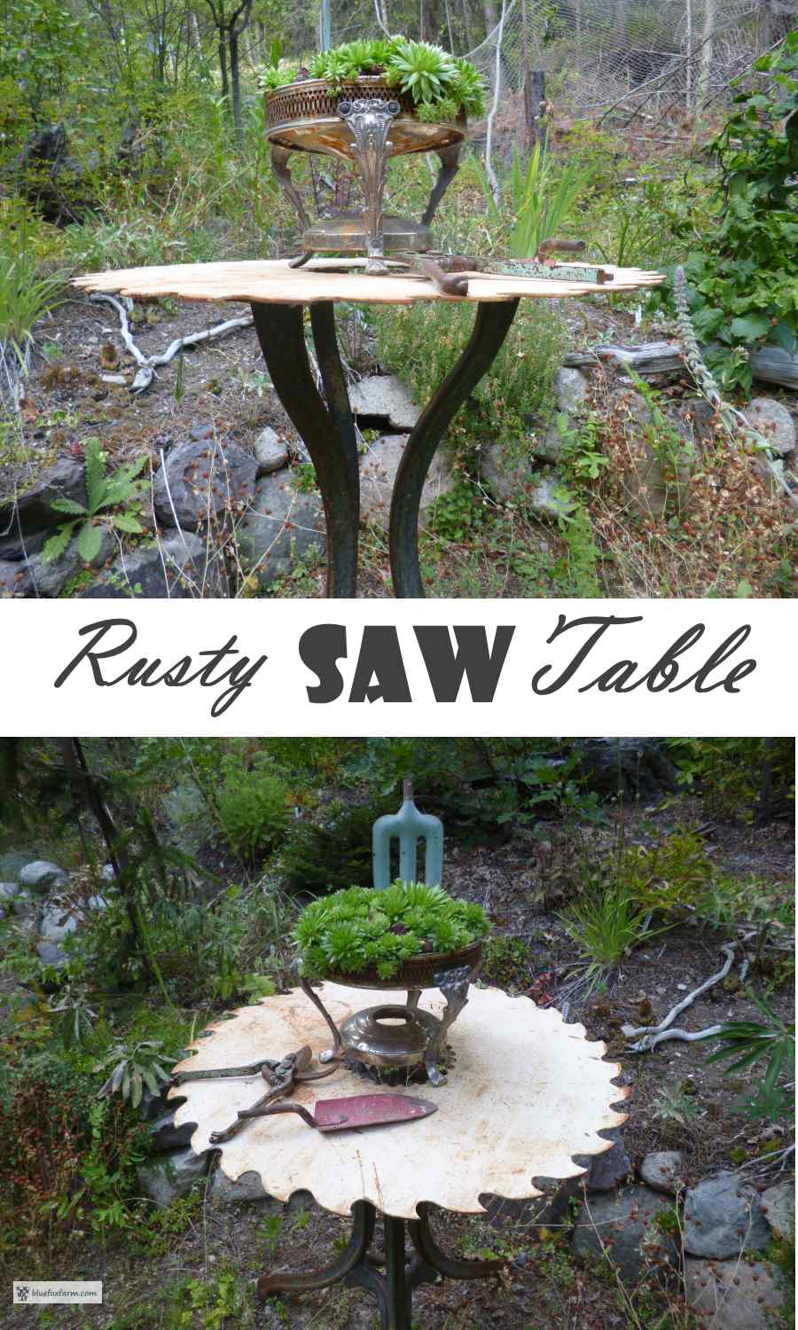 Rusty Saw Table
