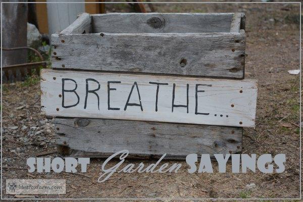 Simple Garden Sayings